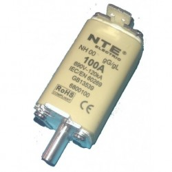 Fuse Link NH00-100A